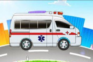 जिल्ला नै एम्बुलेन्सविहीन: पचास शैयाको अस्पतालमा बिरामी बोक्न डोको