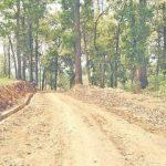 नवलपुरलाई गण्डकी प्रदेशको राजधानीसँग जोड्ने सडक निर्माणको काम सुस्त