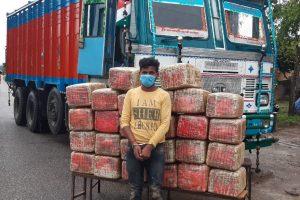 २७० किलो गाँजासहित चितवनमा भारतिय नागरिक पक्राउ